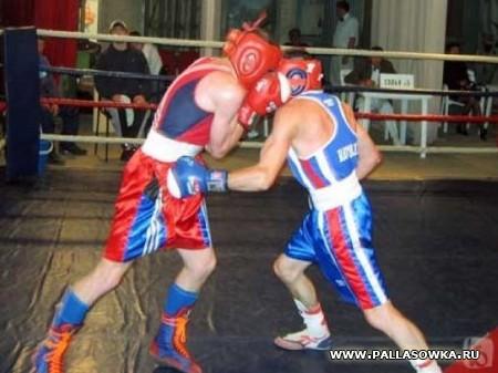 Боксер из Палласовки завоевал в Пицунде золотую награду